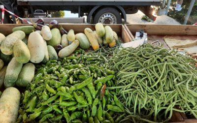 COVID-19: Comment s'approvisionner en fruits et légumes frais à Sainte-Suzanne?
